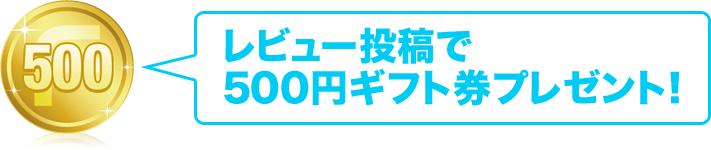 レビュー投稿で500円ギフト券プレゼント!
