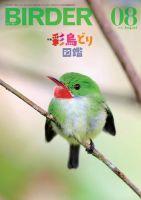 BIRDER(バーダー):表紙