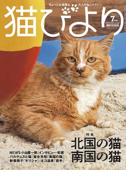 猫びより  表紙
