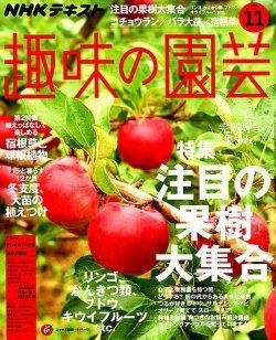 NHK 趣味の園芸 2018年11月号 (2018年10月21日発売) 表紙