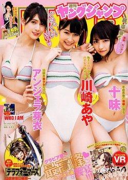 週刊ヤングジャンプ 2018年12/13号 (2018年11月29日発売) 表紙