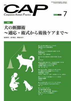 月刊CAP 2019年7月号 (2019年07月01日発売) 表紙